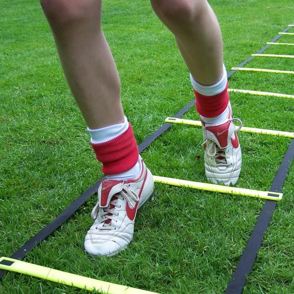Primary PE activities